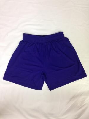 Girls Purple PE Shorts