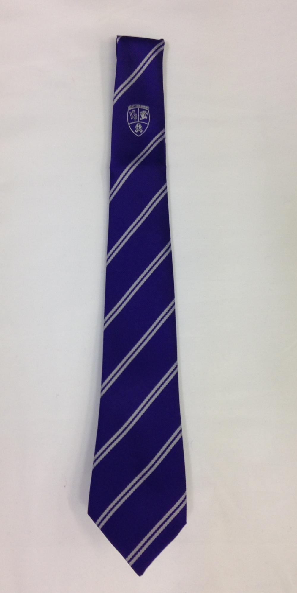 CSGS School Tie