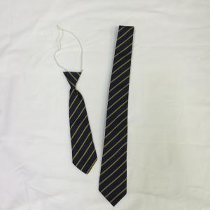 Wyborne Primary School Tie